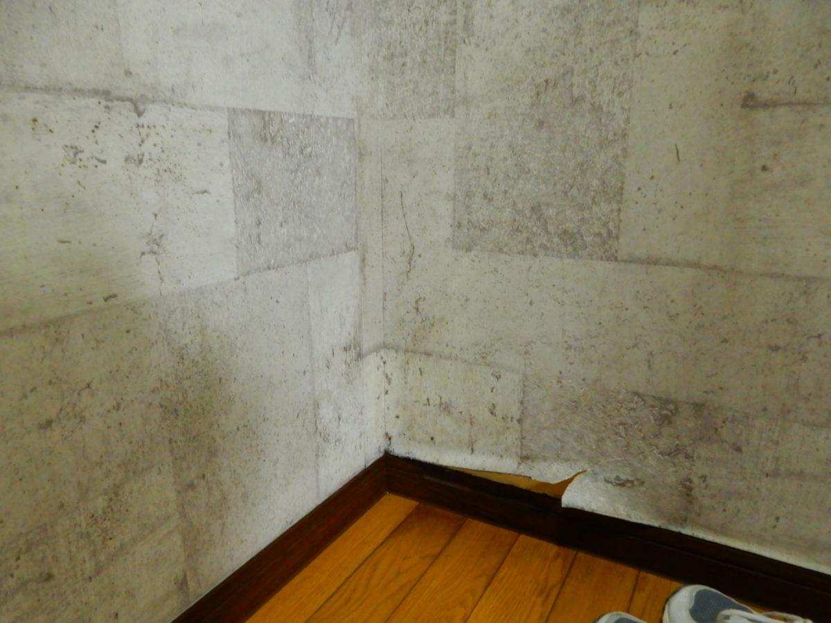 準備室の壁が湿っぽい